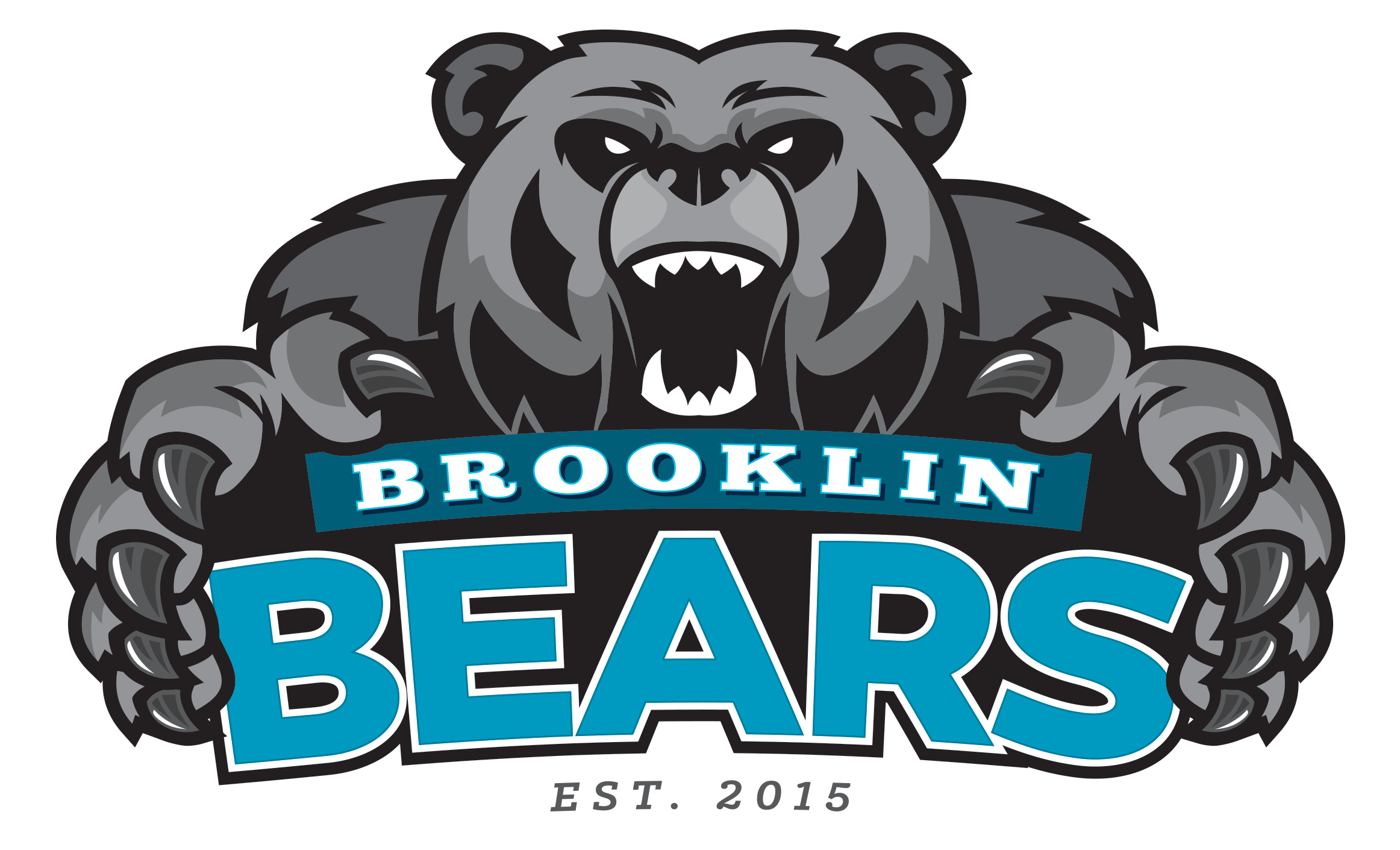Brooklin High School logo